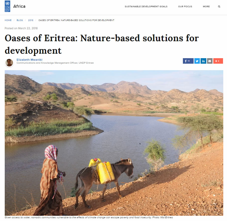 harnett eritrea news today